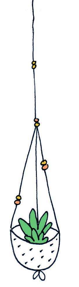 hanging plant 1